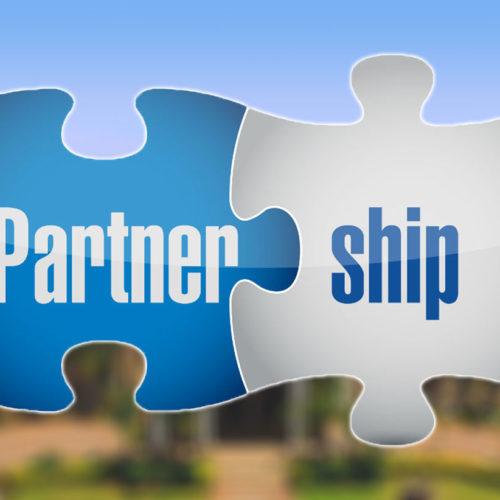 Partnership Option 3